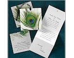 Peacock Feather<BR>Wedding Invitation